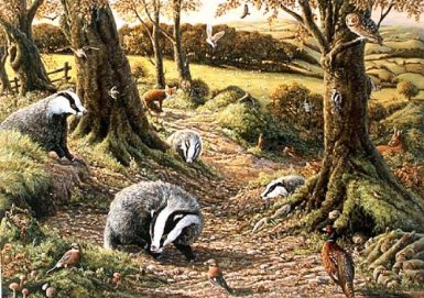 Badger jigsaw puzzle - Badgers Dell In Woodland
